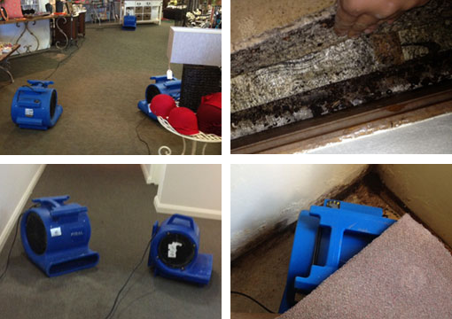 hire air dryers for wet carpet Sydney
