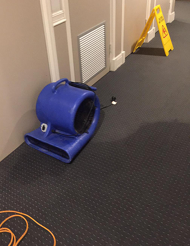 Emergency carpet flooding repairs in Sydney 2019