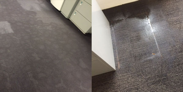 carpet water extraction Sydney, September 2018, wet carpet water restoration Sydney