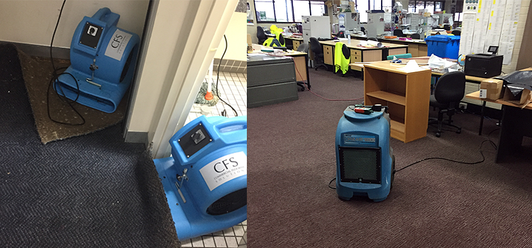 drying office carpet wet floors and dehumidifying Sydney