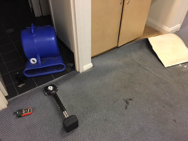 relaying and drying wet carpet Sydney 2017 Parramatta