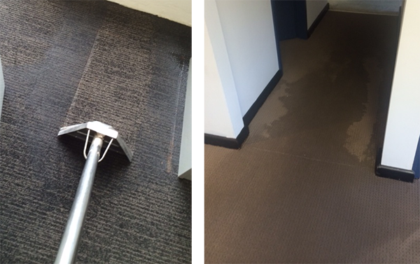 carpet water damage repairs Sydney