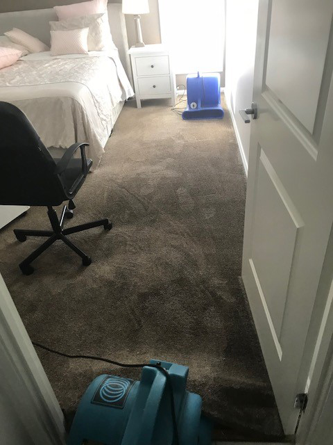 wet carpet drying 2018 by Refresh carpet cleaning